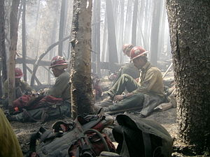 300px-Prescott_IHC,_Gnarl_Ridge_Fire,_2008